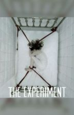 The Experiment  by HaleyyP
