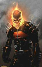 A Ghost Rider's Journey Vol.6: Welcome to Ylisse(x Fire Emblem Awakening) by DaniloCiak
