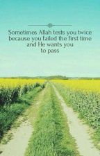 Islamic Quotes And Hadiths by Saadman_44