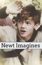 Newt Imagines by Running_SassQueen