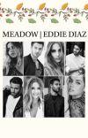 MEADOW   EDDIE DIAZ cover