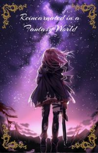 Reincarnated in a Fantasy World cover
