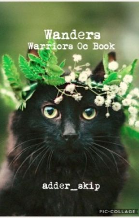 【wanders 】» warriors oc guide book  by finchy-