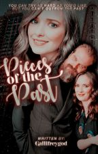 Pieces of the Past - [Danona] Book One ✓ by GallifreyGod