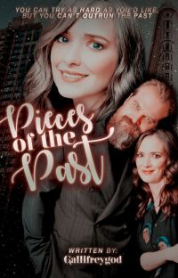 Pieces of the Past - [Danona] Book One ✓ cover