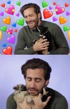 Jake gyllenhaal imagines by kidwritesstuff