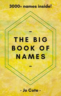 The Big Book of Names cover