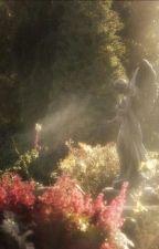 garden of flowers by roseylit