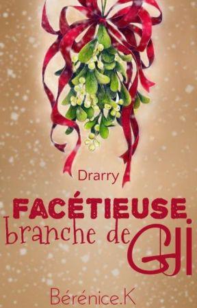 Facétieuse Branche de Gui  by BereniceRoseRouge