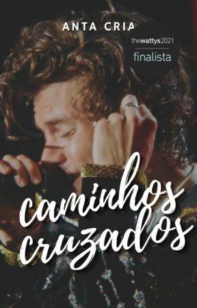 Caminhos Cruzados // harry styles by pallidus