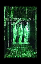 The World is a Simulation  by Juicy_Jesse