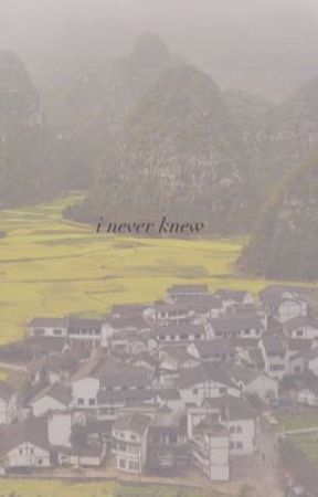 i never knew by kai_the_spai