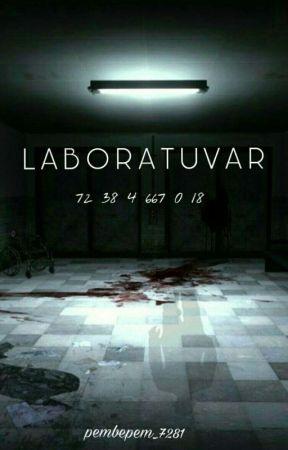 LABORATUVAR  by pembepem_7281