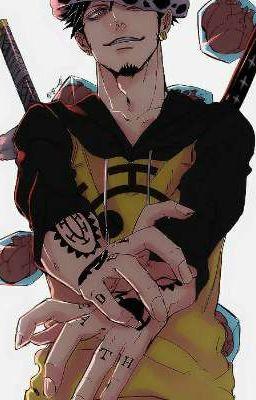 Nhịp đập trái tim ( Đồng nhân One Piece)