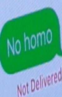 No homo but I love you cover