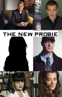 The New Probie (an NCIS Fanfiction) cover