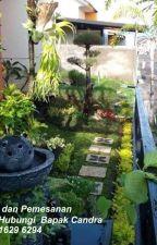 WA 0822 1629 6294 pembuatan taman belakang rumah by rofikarta