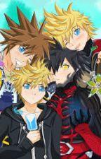 Kingdom Hearts Memes! by LoZ_Keyblade_Master