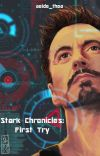 Stark Chronicles: First Try cover