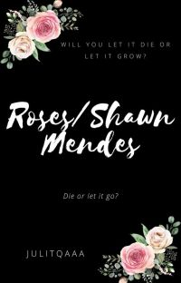 Roses / Shawn Mendes cover
