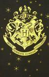 The Cult of Muggleborns  cover