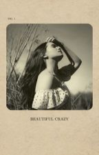 Beautiful Crazy (WIRIP BOOK 2) by countrymusicanon