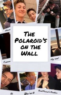 The Polaroid's on the Wall cover