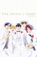 Love Is FREE! (A Collection Of ReaderxIwatobiMember Fics) by beabei__