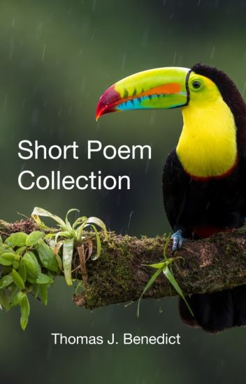 Short Poem Collection