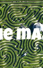The Maze by pinnyinthehouse