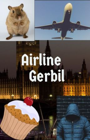 Airline Gerbil - Short Story by hatecake007