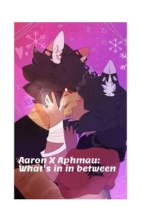 Aaron X Aphmau: What's in between cover