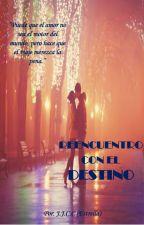 REENCUENTRO CON EL DESTINO by ShugoSharaCisneros