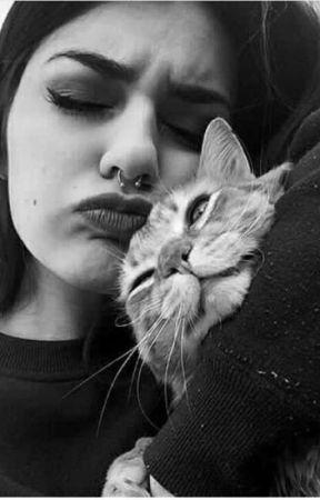 اسد في براثن القطه by user25914298