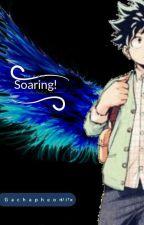 Soaring! by gachapheonix