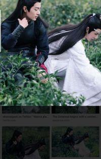 WANGXIAN MODERN LOVE  cover