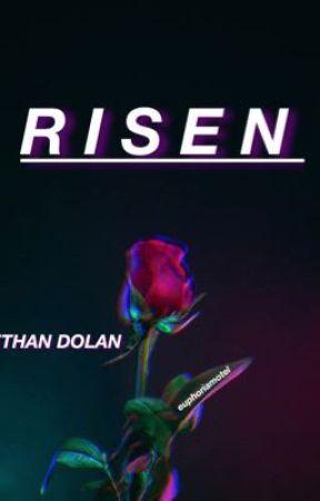 RISEN | e.dolan by euphoriamotel
