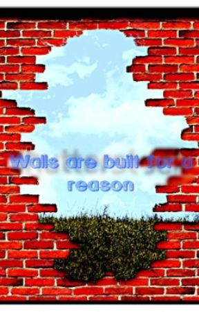 Walls are Built for a Reason by ThatsArguable