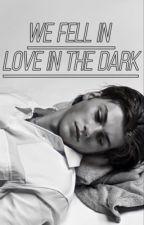 we fell in love in the dark  by killerjet