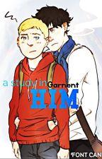 A Study In Him (Teenlock) by Garnent