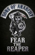Sons of Anarchy Preferences by Erica_Torraz