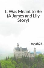 It Was Meant to Be (A James and Lily Story) by rainasteele