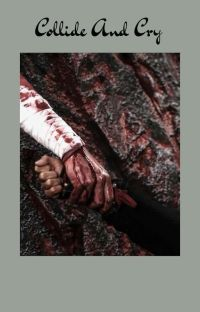 Collide and Cry cover