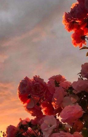 Dear Sweetheart by sunflowersarmy