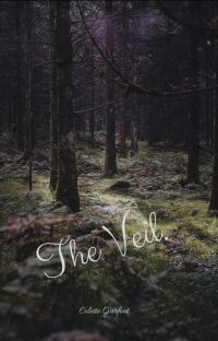 The Veil cover