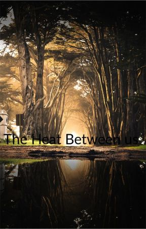 The Heat Between Us by noliathemighty