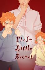 Their Little Secret [Hinata Haikyuu!!] by YoaiIsMyAesthetic
