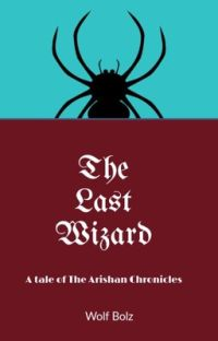 The Last Wizard cover