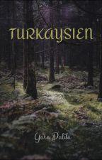 TURKAYSIEN by werrmaid