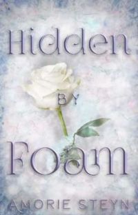 Hidden by Foam - Book 3 (Completed) cover